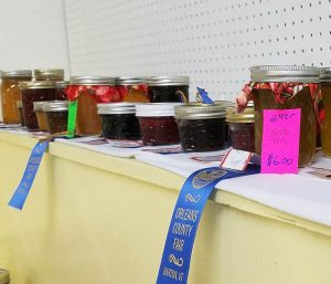Jellie winners from the Orleans County Fair - food producers in vermont
